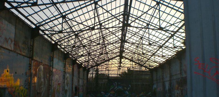 Les activités de Darwin en partie pérennisées à Bastide Niel