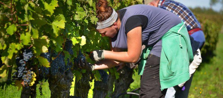 Les inégalités femmes-hommes dans le travail persistent en Aquitaine