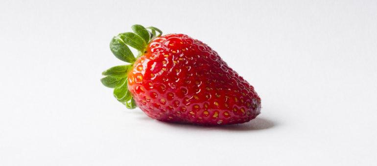 Serge, producteur de fraises, aimerait bien que Le Pen ramène la sienne