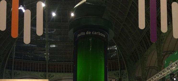 Des microalgues girondines pour dépolluer l'air de Paris