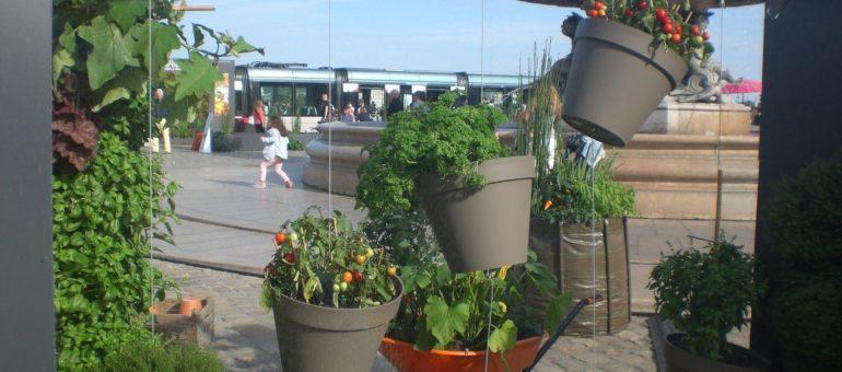 Agora, graine de cité jardin à Bordeaux ?