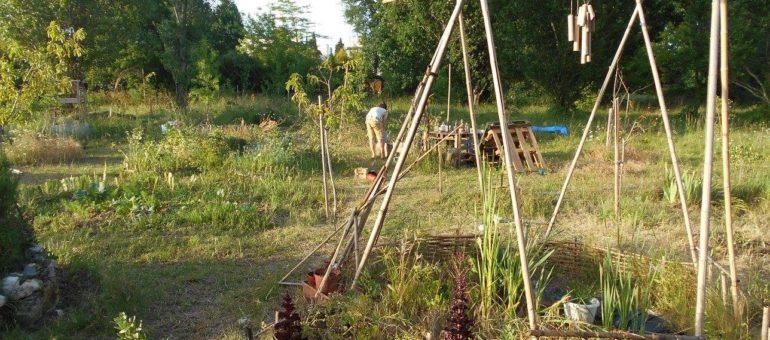 Jardiner, faire ses courses, cuisiner ensemble… l'alimentation locale crée-t-elle du lien social?