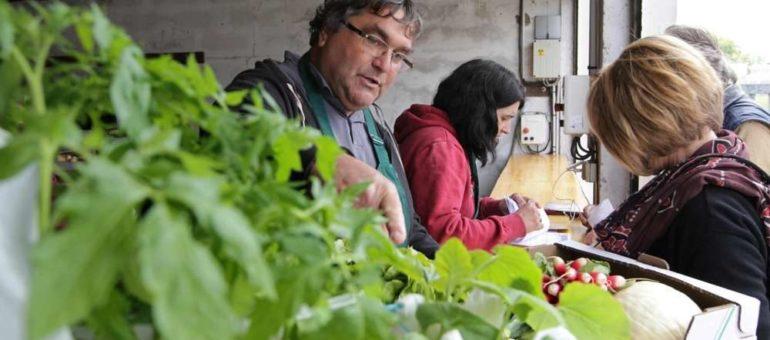 Comment produire et manger local à Bordeaux Métropole ?