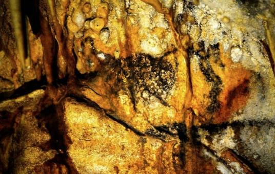 Une expo très olé-olé sur l'histoire de la tauromachie ouvre à Bordeaux