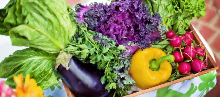 «Manger bio, c'est changer ses habitudes alimentaires»