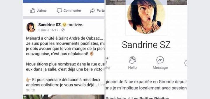 Bousculé en Gironde, Ménard provoque un déferlement de haine contre deux élus
