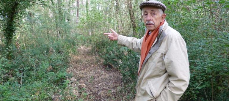 A Uzeste, des citoyens rachètent la forêt pour la protéger