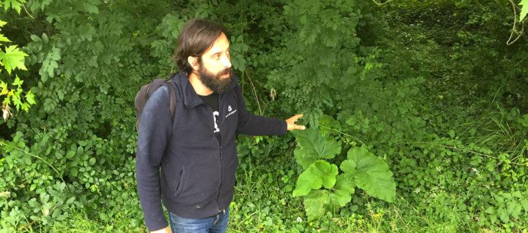 Thomas Ferrand, le mage des mets sages et des herbes folles