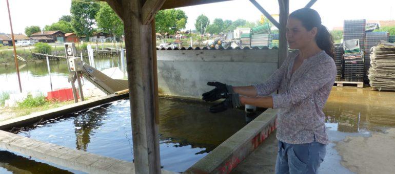 Les ostréiculteurs du Bassin d'Arcachon en ont plein les bottes