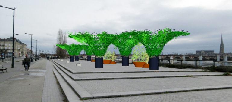 Canicule à Bordeaux : les nouvelles installations et (revoilà) les arbres en pot