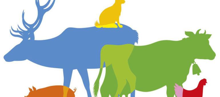 Pierre Hurmic soutient le «référendum pour les animaux»