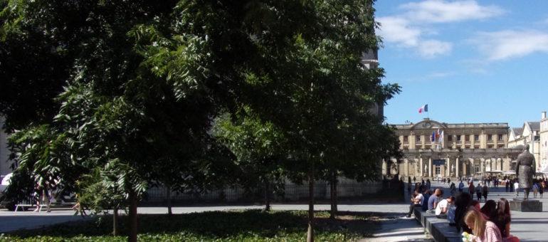 Ville de pierre, Bordeaux  bourgeonne