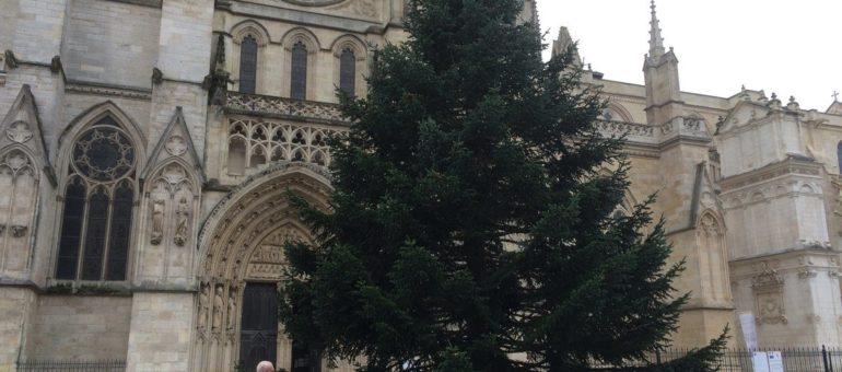 Fin du sapin de Noël à Bordeaux : le maire se fait enguirlander