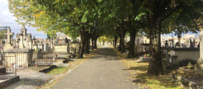 Le cimetière de la Chartreuse espère devenir «un lieu de vie»
