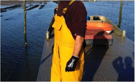 «Les gens vont se faire plaisir pour les fêtes», espère Gilles, ostréiculteur du Bassin d'Arcachon