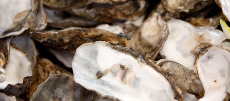 Après les repas de fêtes, vos coquilles d'huîtres s'offrent une nouvelle carrière