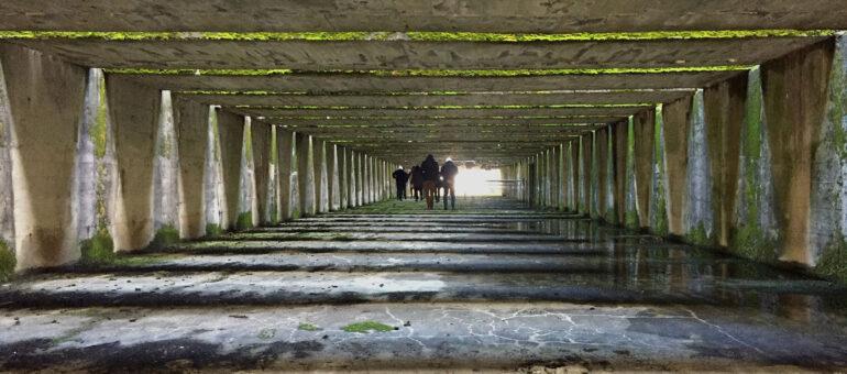 Le toit et sept alvéoles de la Base sous-marine cherchent occupants