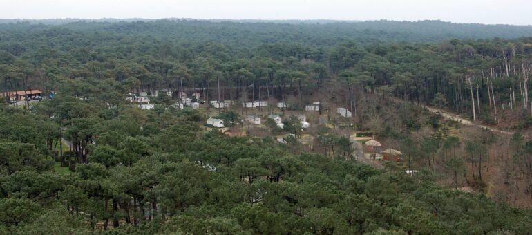 La Gironde championne des atteintes à l'environnement