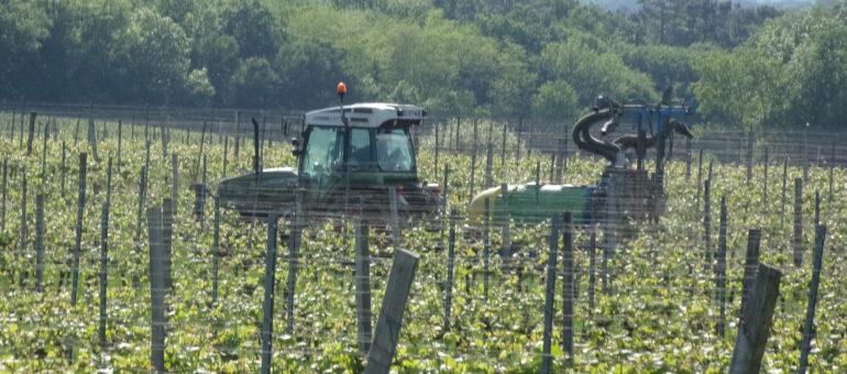 La Gironde est encore le département français le plus friand de pesticides
