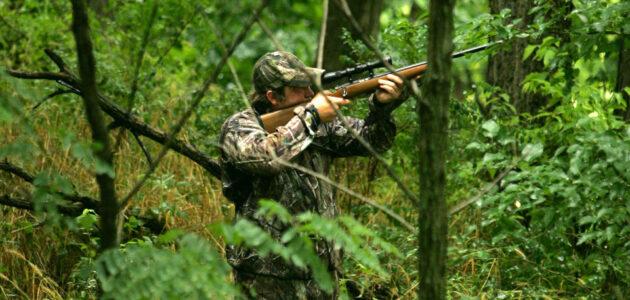Accidents et menaces, le mauvais tableau de la chasse en Gironde