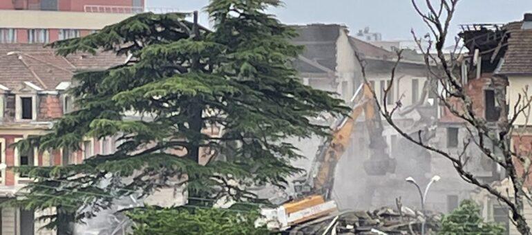 Peut-on encore sauver les arbres remarquables du site de Bagatelle ?