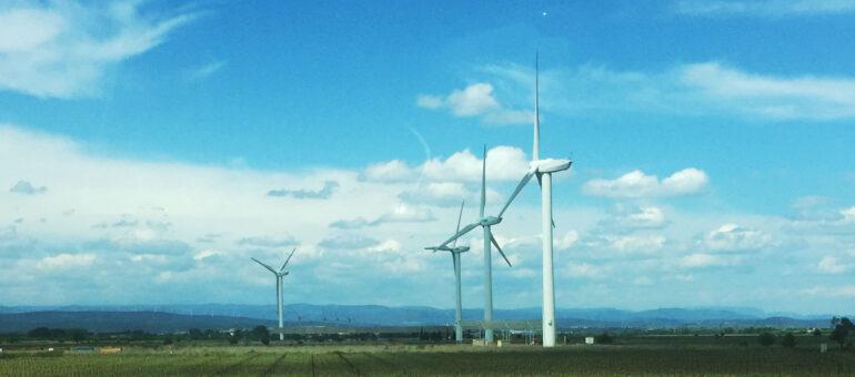 Régionales en Nouvelle-Aquitaine : l'environnement, ça commence à bien faire ?